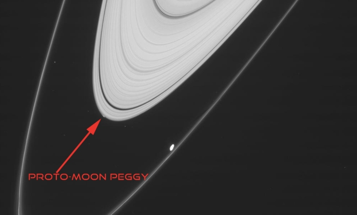 The thin, outermost ring shown in this picture from the Cassini probe is Saturn's F ring, and the bright dot near it is the moon Prometheus. The thicker white band is the A ring, and the smudge near what looks like the tip of that ring was caused by Peggy (Original Image: NASA/JPL/Space Science Institute)